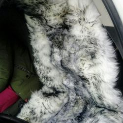 Fur covers on the car. 100% wool