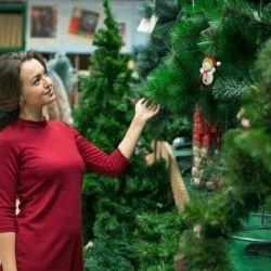 Θα πουλήσω ένα νέο χριστουγεννιάτικο δέντρο!