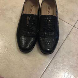 bayan ayakkabıları