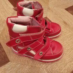 Surcil orto botları