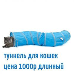 Tunel pentru pisică