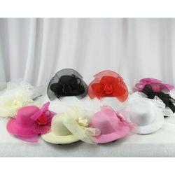 Șuruburi pentru pălării