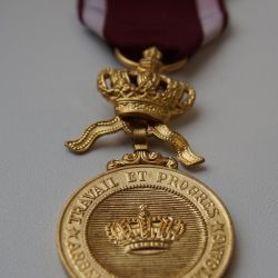 Taç Nişanı Altın Madalyası (Belçika)