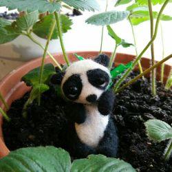мила панда