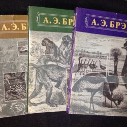 A. Bram Animal Life, dust jacket
