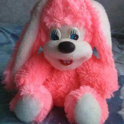 Soft Hare