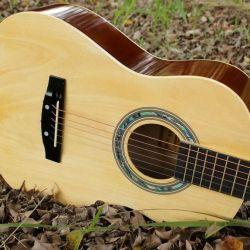 Brigitta gitarı