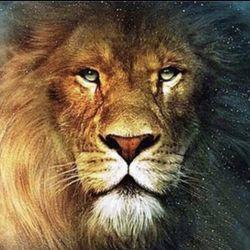 Διαμάντι μωσαϊκό λιοντάρι κεντήματα