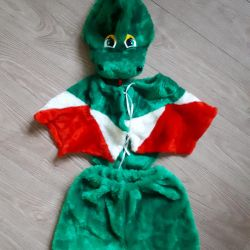 Dragon costum