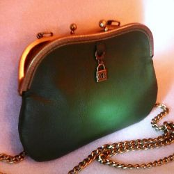 Bag green author's (leather)