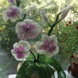 Орхидея из бисера ( ручная работа)