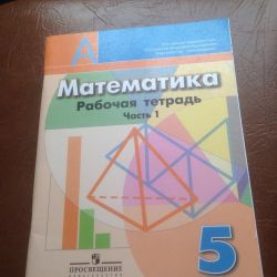 Математика. 5 класс. Рабочая тетрадь