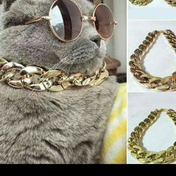 Collar for cat or dog