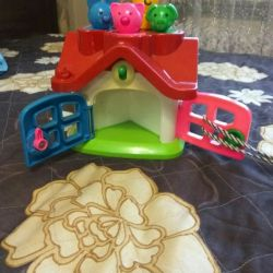 House sorter, educational toy