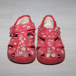 Ragged shoes, zebra