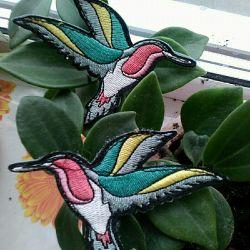 Birds Velcro Caliber