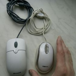 Two mice at the same price