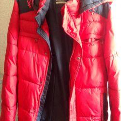 Winter male jacket