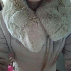 Kış aşağı ceket 44