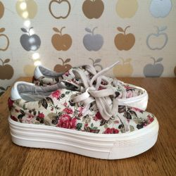 Pantofi de pantof