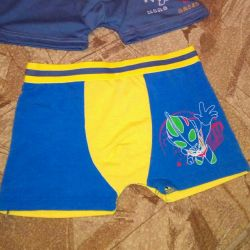 Boxers new for boys2pcs