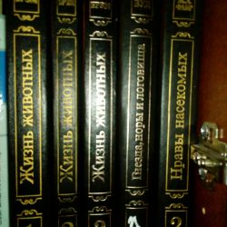 Bram AE Animal Life in 3 Volumes