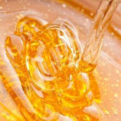 Honey wholesale