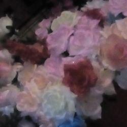 Продам оптом остаток цветов