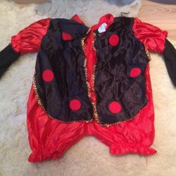 Маскарадный костюм (божья коровка)