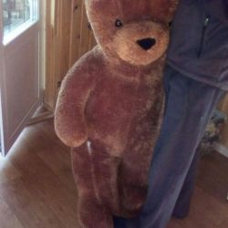 Медведь Бублик