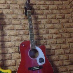 Ηλεκτρική ακουστική κιθάρα έξι κορώνων