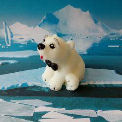 Soap bear