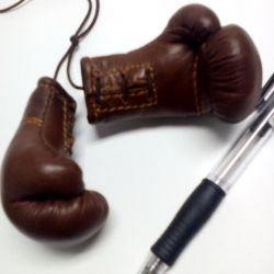 Souvenir boxing gloves from natures skin