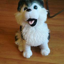 Το παιχνίδι είναι ένα νέο, μαλακό σκυλί Husky 35 cm.