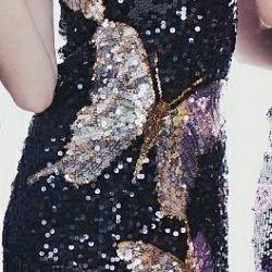 Elbise payetler