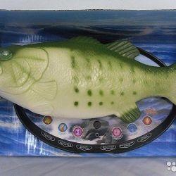 Talking carp, new