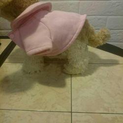 Haine pentru câini de talie mică
