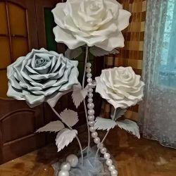 Cultivarea trandafirilor gigant