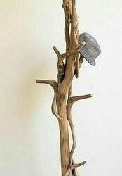 Hanger from a tree trunk.