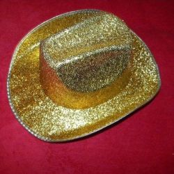 Disko şapkası
