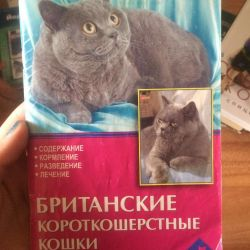 Book about british cats