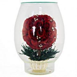 Квіти в склі з натуральних троянд і орхідей