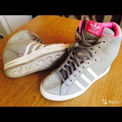 Sneakers Adidas Suede