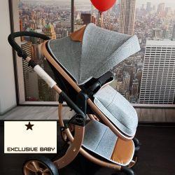 Bebek arabası 2v1