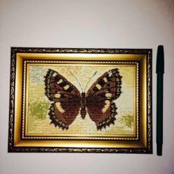 I can On realization-Butterflies, landscapes, tapestry