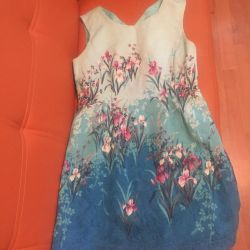 Oasis 48 dress