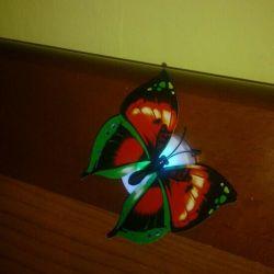 Fluturașii strălucesc