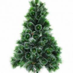 Cedar pine Christmas tree with snow
