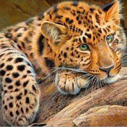 Diamond leopard mozaic