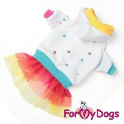 Gökkuşağı elbisesi (köpek kıyafetleri)